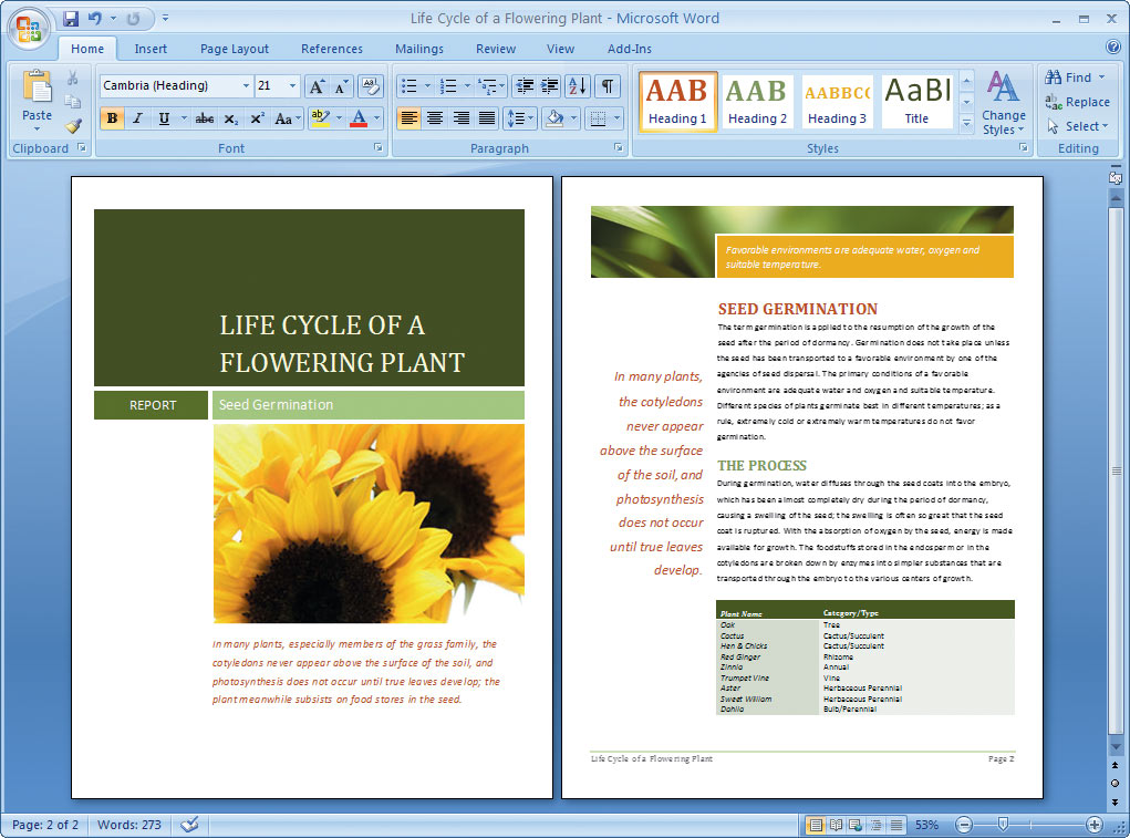 word doc designs